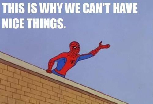 52252-spiderman-this-is-why-we-cant-4pxt