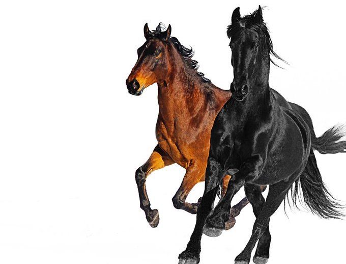 Capa do single Old Town Road