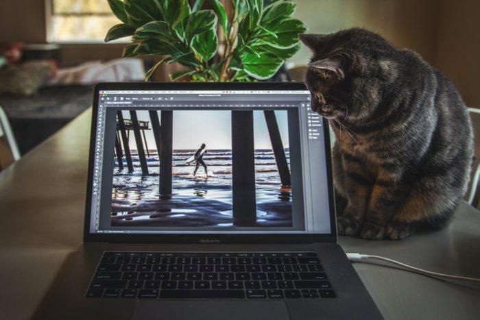 Atalhos do Photoshop / Tim Mossholder / Unsplash