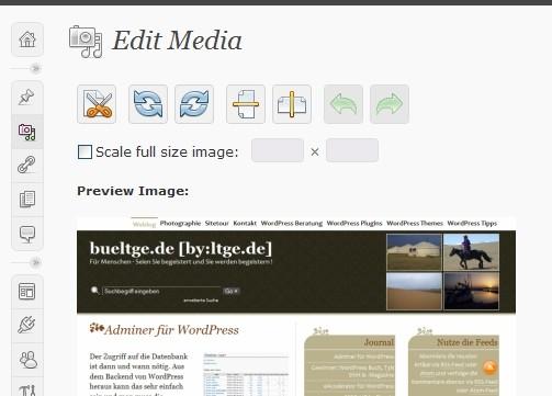 Editor de imagens do WordPress 2.9. (Reprodução)