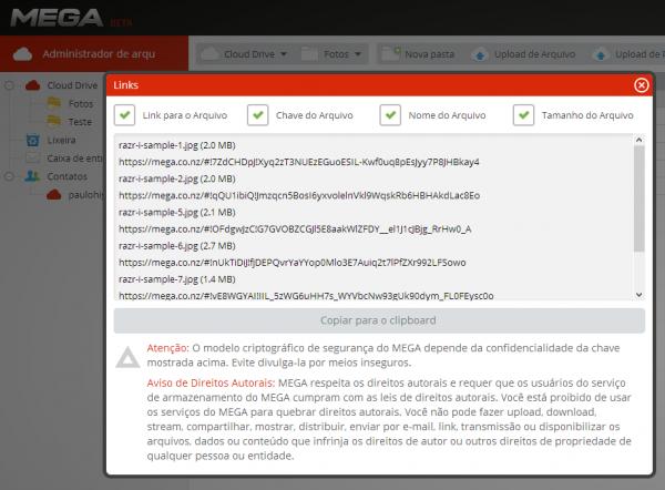 Você pode compartilhar seu arquivo com a chave de segurança no próprio link