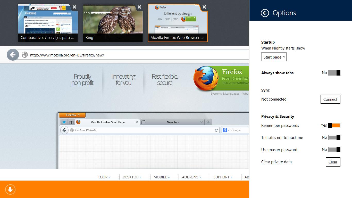 Firefox Zoom Pagina