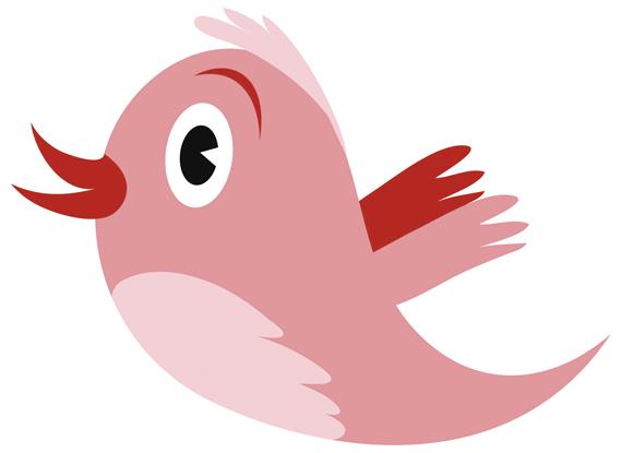 twitter-passarinho