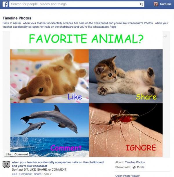 facebook-like-baiting