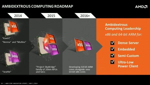 AMD  Project SkyBridge