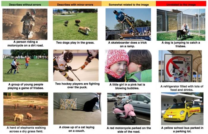 Google: imagens reconhecidas pela tecnologia, incluindo as erradas
