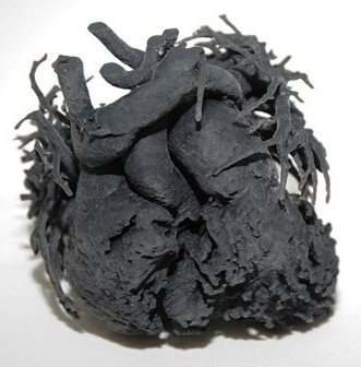 Modelo 3D de coração de Adaenelie Gonzalez