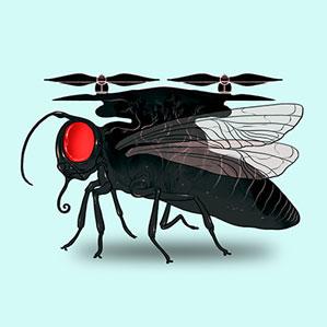 olhos-de-inseto