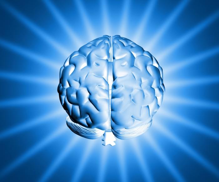 cerebro-memoria-cabeca
