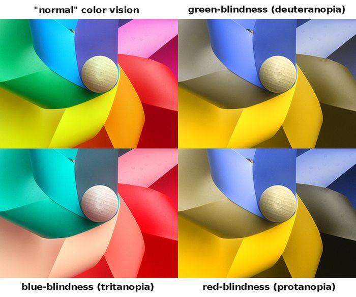 Tipos de daltonismo