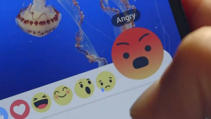 facebook-raiva