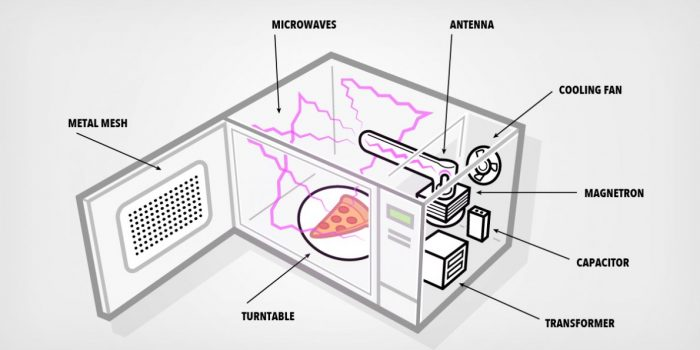 how-do-microwaves-cook-food