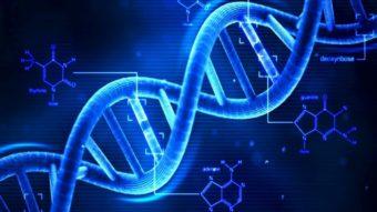 Os planos da Microsoft para armazenar dados em DNA