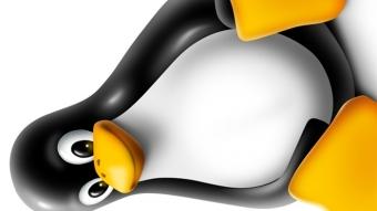 Ransomware para Linux sequestra servidores e pede resgate de R$ 3,5 milhões
