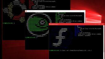 Windows 10 vai ganhar kernel Linux mais completo