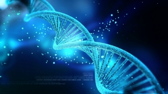 Pesquisadores armazenam GIF no DNA de bactérias vivas