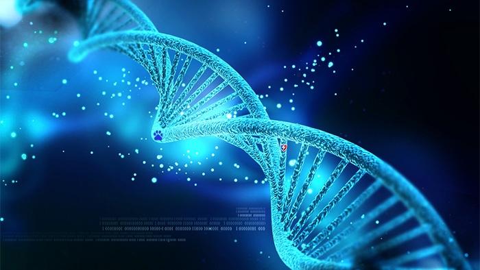 Cientistas injetam malware de computador em DNA Cientistas injetam malware de computador em DNA