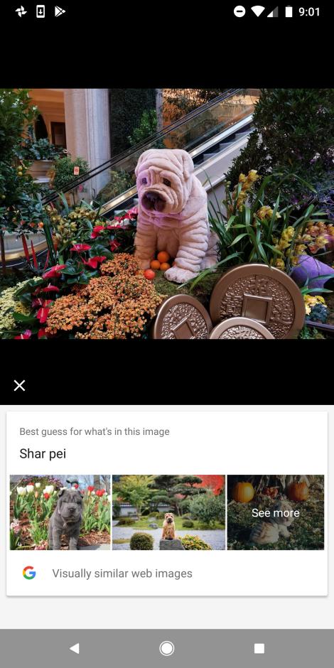 Google lleva la realidad aumentada ARCore a 13 modelos Android 6