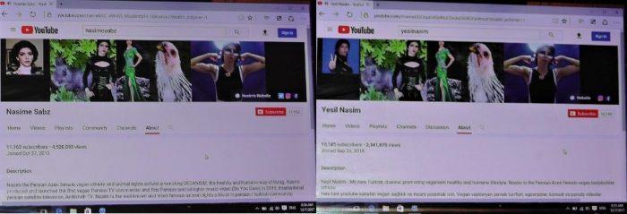 Capturas de tela dos canais feitas pela própria YouTuber