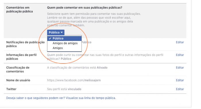 Comentar em Posts Públicos Facebook