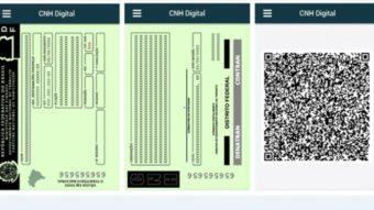 Mais de 500 mil motoristas têm CNH digital