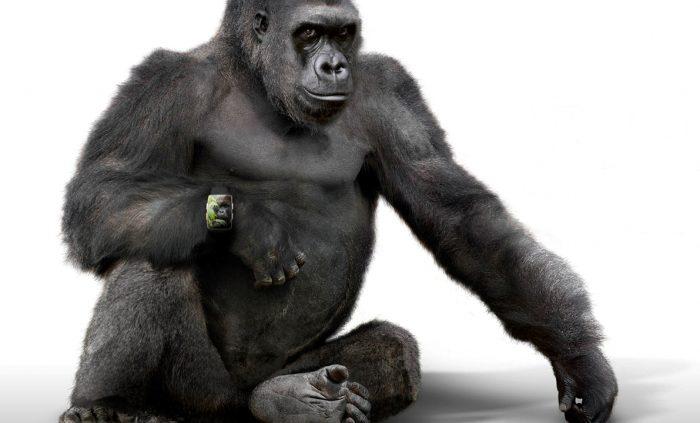 Gorilla + smartwatch