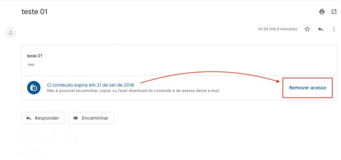 Remover Acesso Gmail
