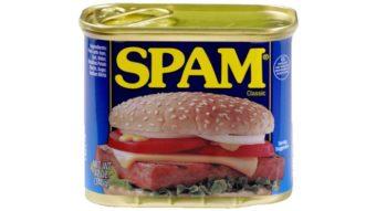 O que é spam?