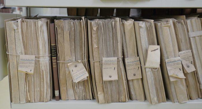 Free-Photos / arquivos antigos / Piabay / como renomear arquivos em lote