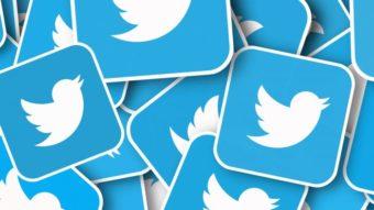 Como usar o Twitter [5 dicas para quem está começando]