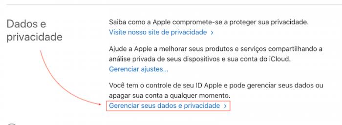 Gerenciar dados iCloud Apple ID