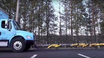 Robôs SpotMini da Boston Dynamics conseguem puxar um caminhão