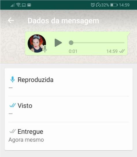 WhatsaApp Confirmação de Leitura - Dados da Mensagem