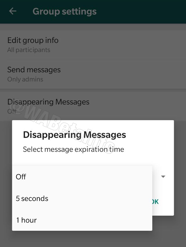 WhatsApp / Mensagens autodestrutivas