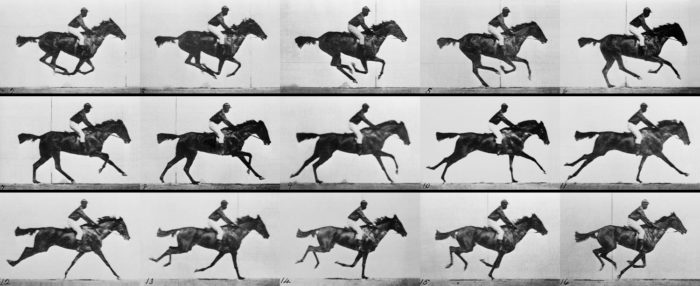 Frames que compõem a animação do cavalo / o que é fps