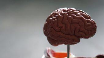 Como bloquear imagens estroboscópicas se você tem epilepsia