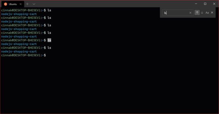 Windows Terminal - busca