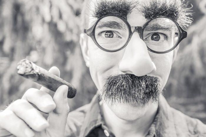 Ryan McQuire / homem usando máscara de Groucho Marx e charuto / Pixabay