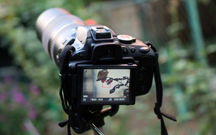 Câmera DSLR (Foto: Immortal shots/Pexels)