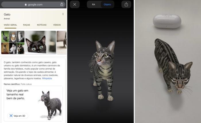 Google e gato em 3D