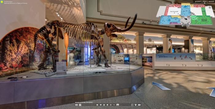 museu nacional de historia natural