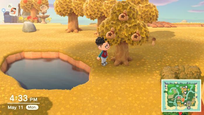 árvore de dinheiro em animal crossing new horizons / lucas lima / captura de tela