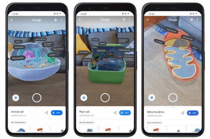 Google - células 3D em realidade aumentada