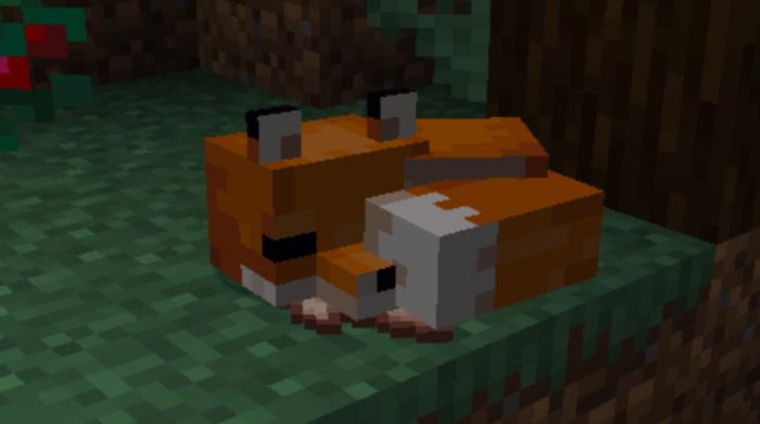 Como domesticar uma raposa no Minecraft / Felipe Vinha / Reprodução