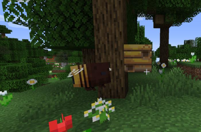 como encontrar abelhas no minecraft / felipe vinha / reprodução
