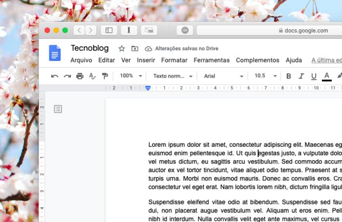 Google Docs (Foto: Reprodução/Bruno Gall De Blasi/Tecnoblog)