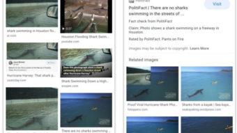 Google Imagens usa checagem de fatos para avisar sobre montagens