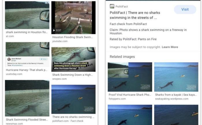 google imagens checagem de fatos