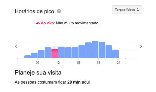 horário de pico google maps