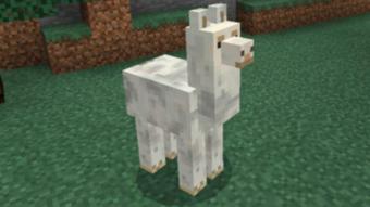 Como domesticar uma lhama no Minecraft